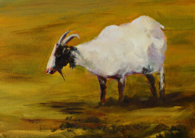 Old-Goat