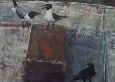 birds-003