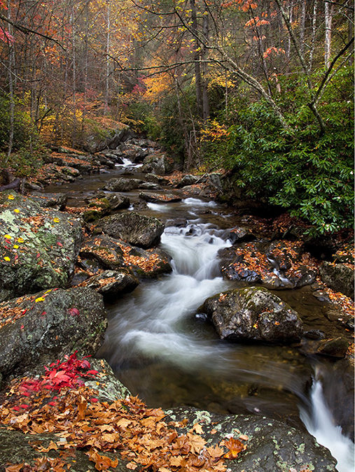 Appalachian Mountain Treasures Photo Show